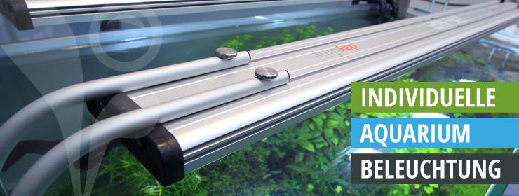 Frisch rgb-led-aquarium-beleuchtung.jpg RN52