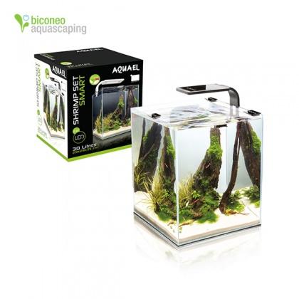 Aquarium kaufen, Wei?glas Aquarium - Biconeo Aquascaping