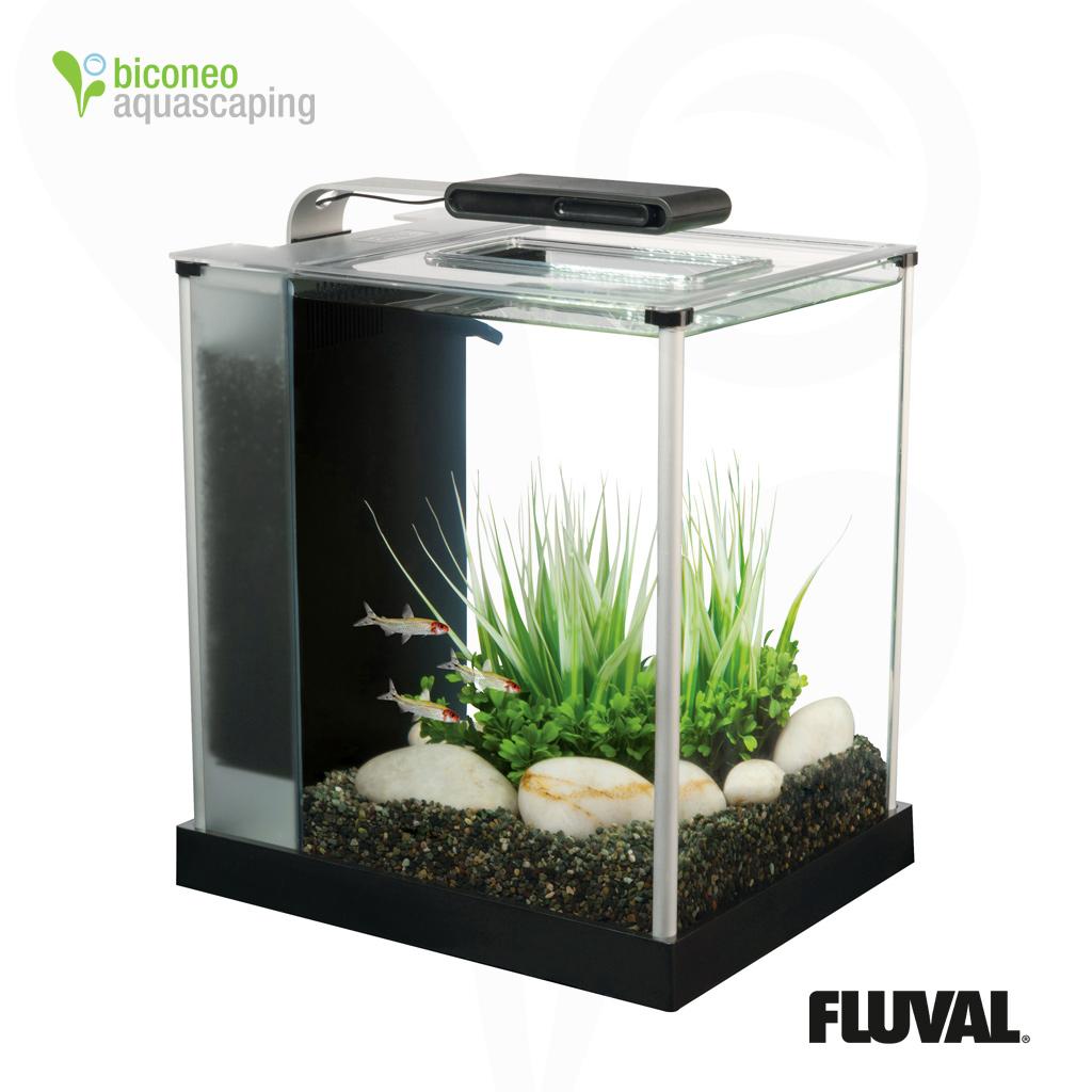 Beautiful Aquarium Aquatlantis Aquatable LED 100x100 Eiche Creme 310 Liter  Good Ideas