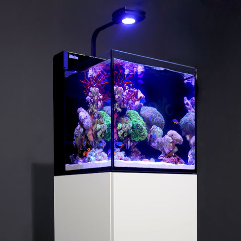 red sea max nano aquarium komplettset ohne unterschrank im sale. Black Bedroom Furniture Sets. Home Design Ideas